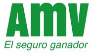 amv_seguros